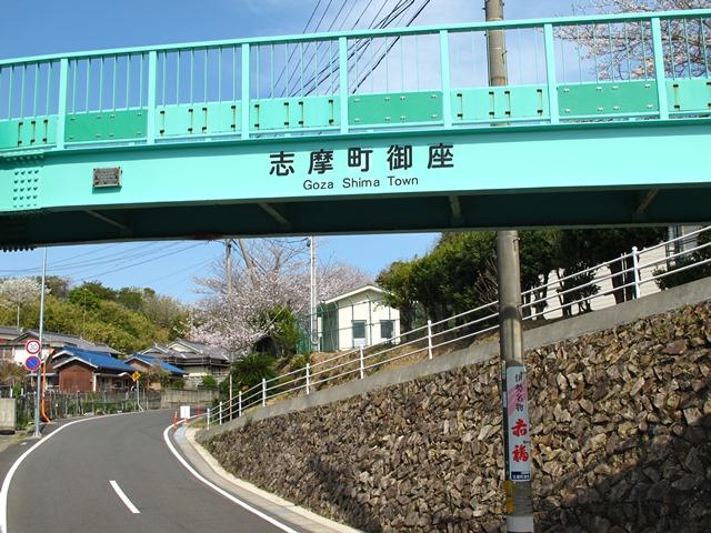 御座小学校の歩道橋と桜
