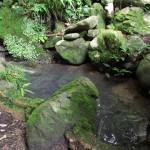 【第7問】御座爪切不動尊には2つ目の池があります。さてどこにあるでしょうか?