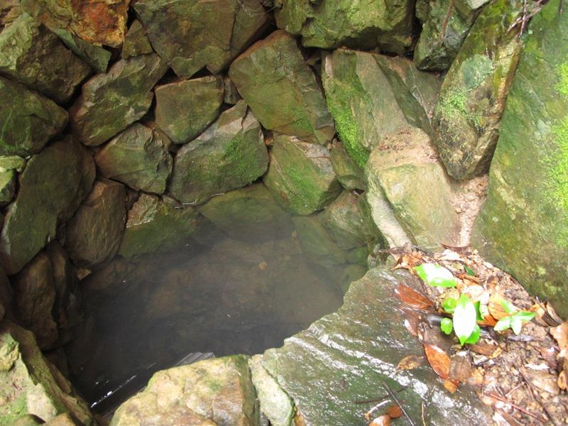 弘法の井戸にも貯水が確認されました。