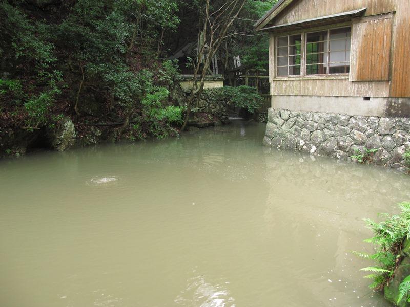 弘法の池も濁ってしまっています。
