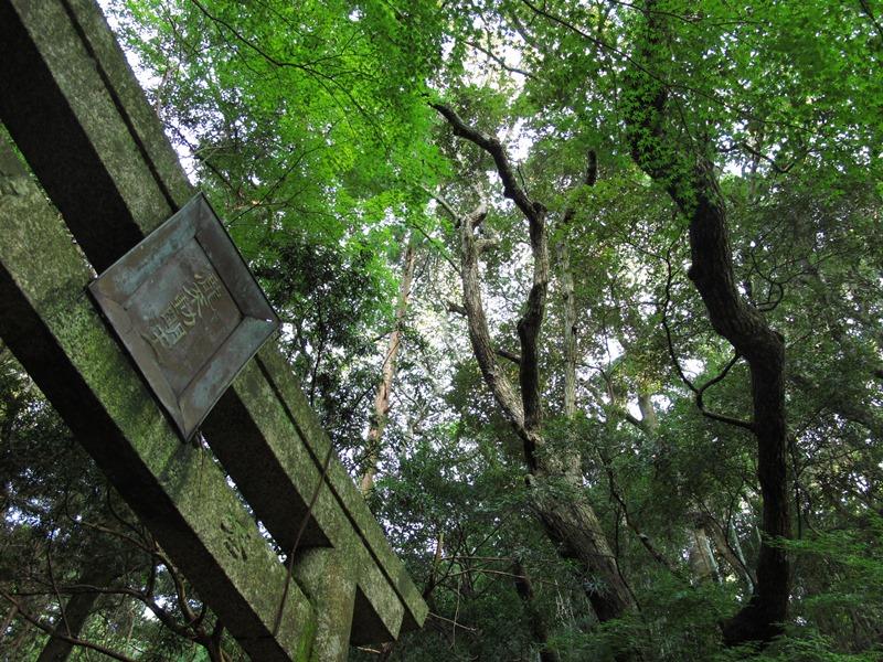 滝の不動の看板と木々