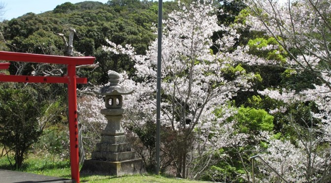 tsumekiri-fudouson_sakura_20160406_03